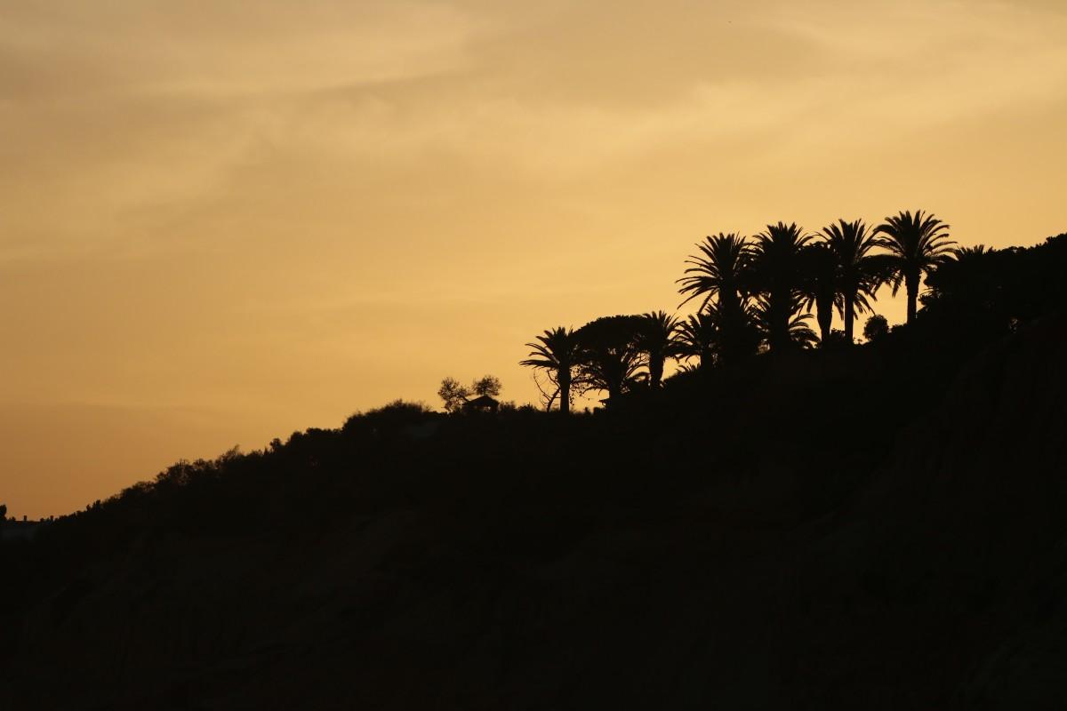 free images horizon silhouette cloud sky sun sunrise