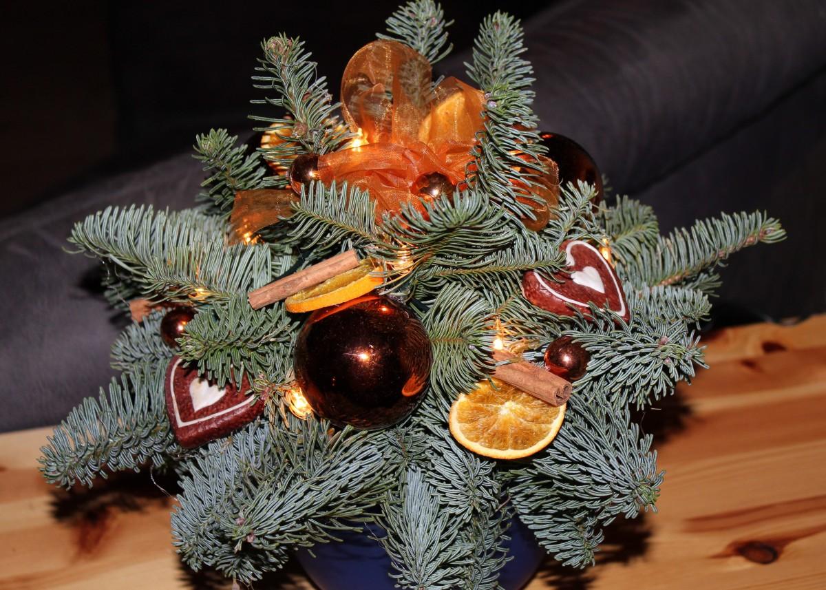 kostenlose foto baum ast licht urlaub weihnachten tanne weihnachtsbaum. Black Bedroom Furniture Sets. Home Design Ideas