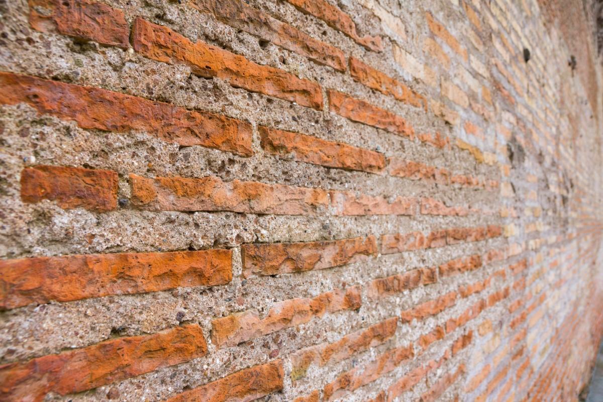 Kostenlose foto baum rock holz textur blatt for Boden ziegelsteine