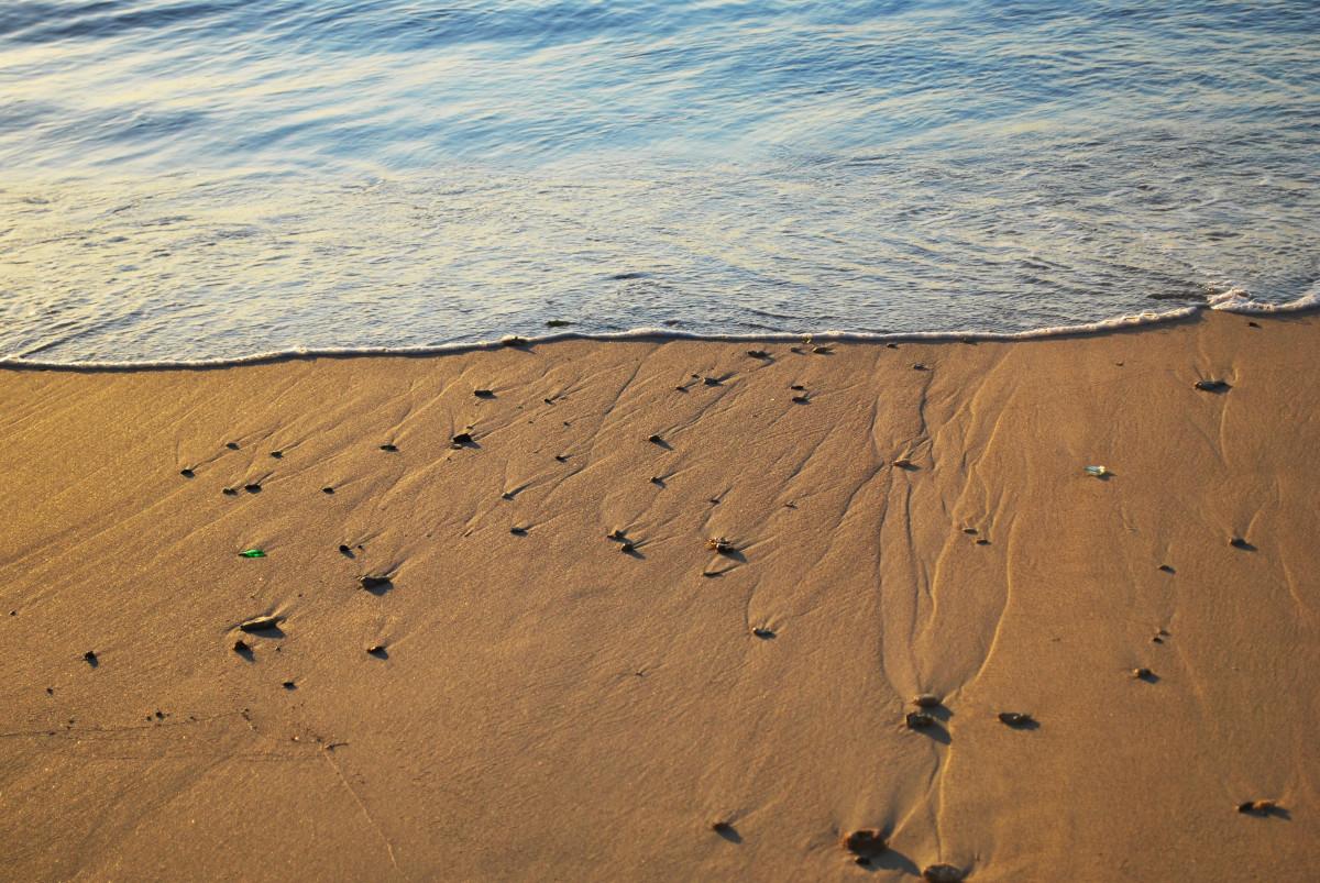 песок на берегу моря картинки шаблоны подойдут
