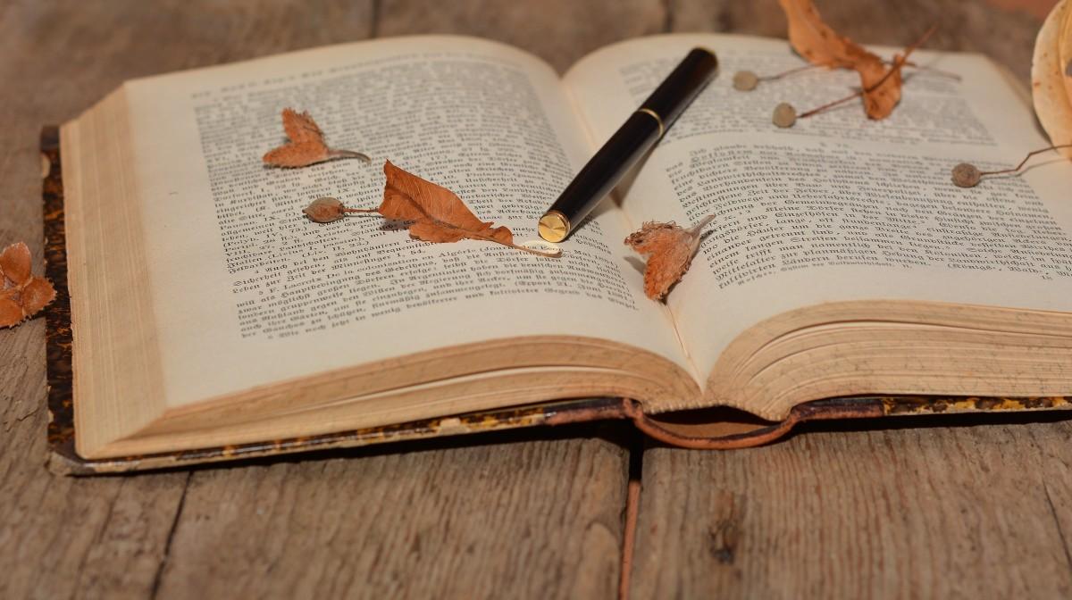Картинки книги поэзия