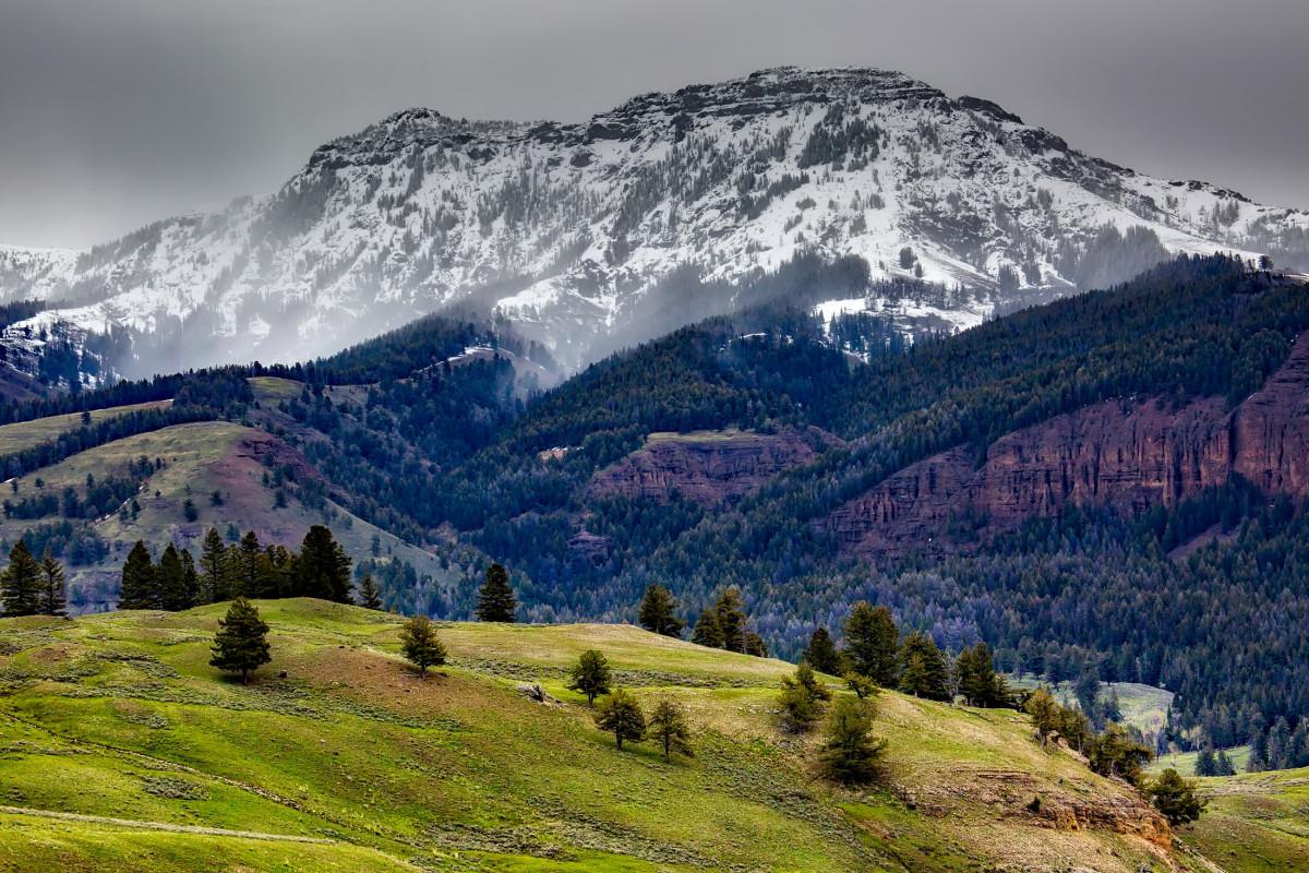 Free Images Landscape Nature Forest Rock Wilderness