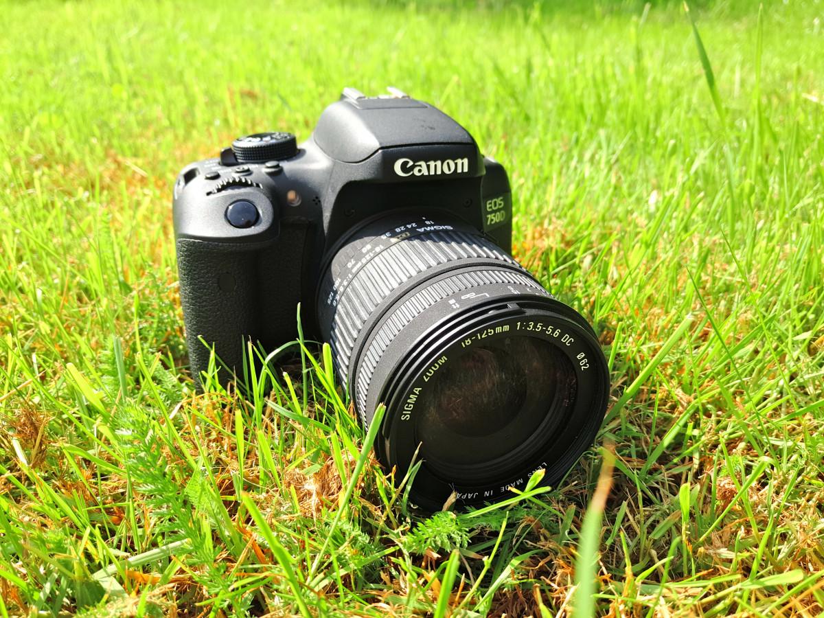 Зеркальный фотоаппарат или со съемным объективом