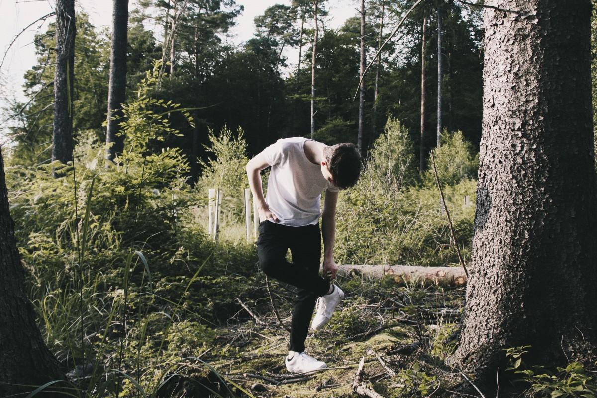 Смешные картинки прогулки по лесу
