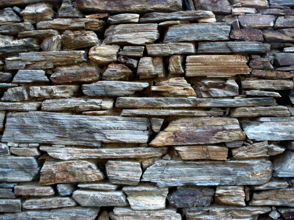 Kostenlose foto rock struktur holz textur kofferraum for Boden ziegelsteine