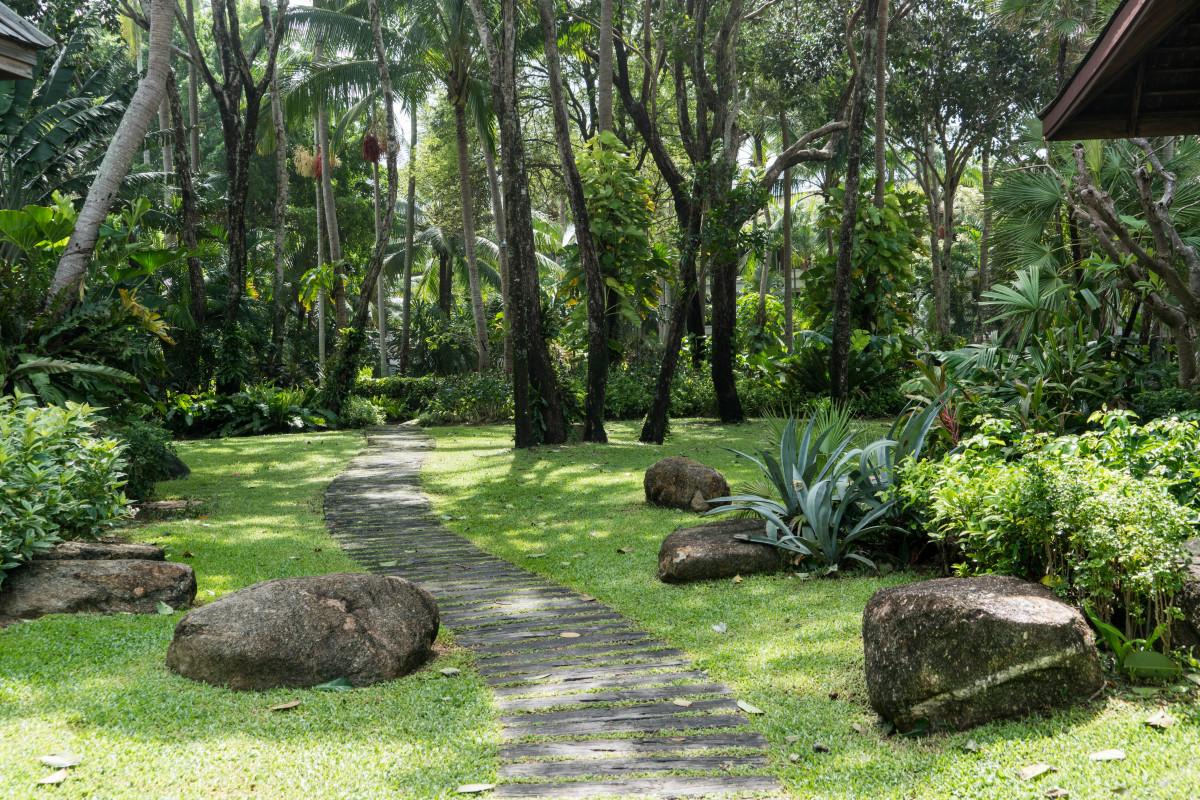 Fotos gratis paisaje rbol naturaleza camino c sped al aire libre cielo edificio - Ley propiedad horizontal patio interior ...