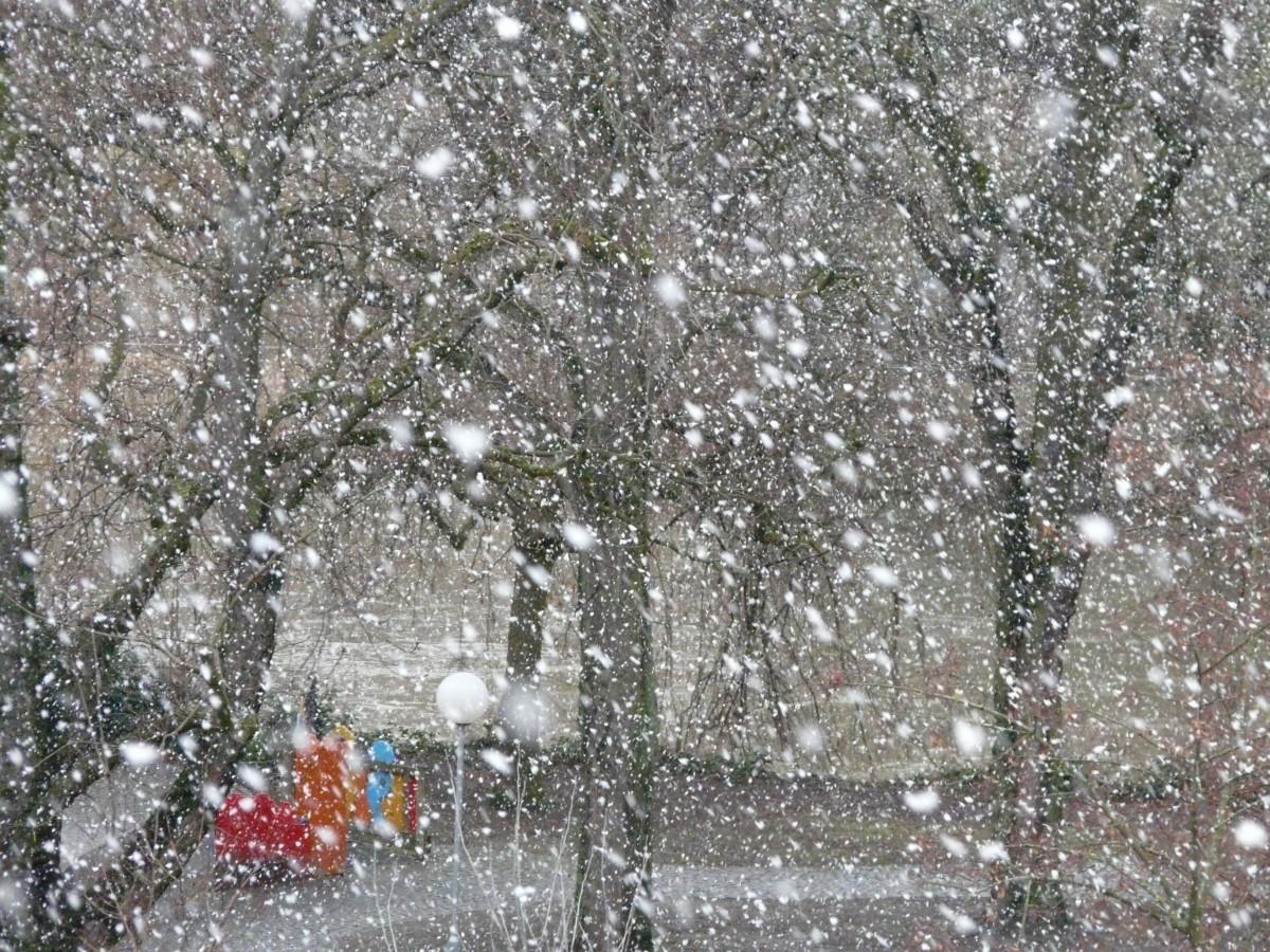 дает картинки про снег и дождь называется большая