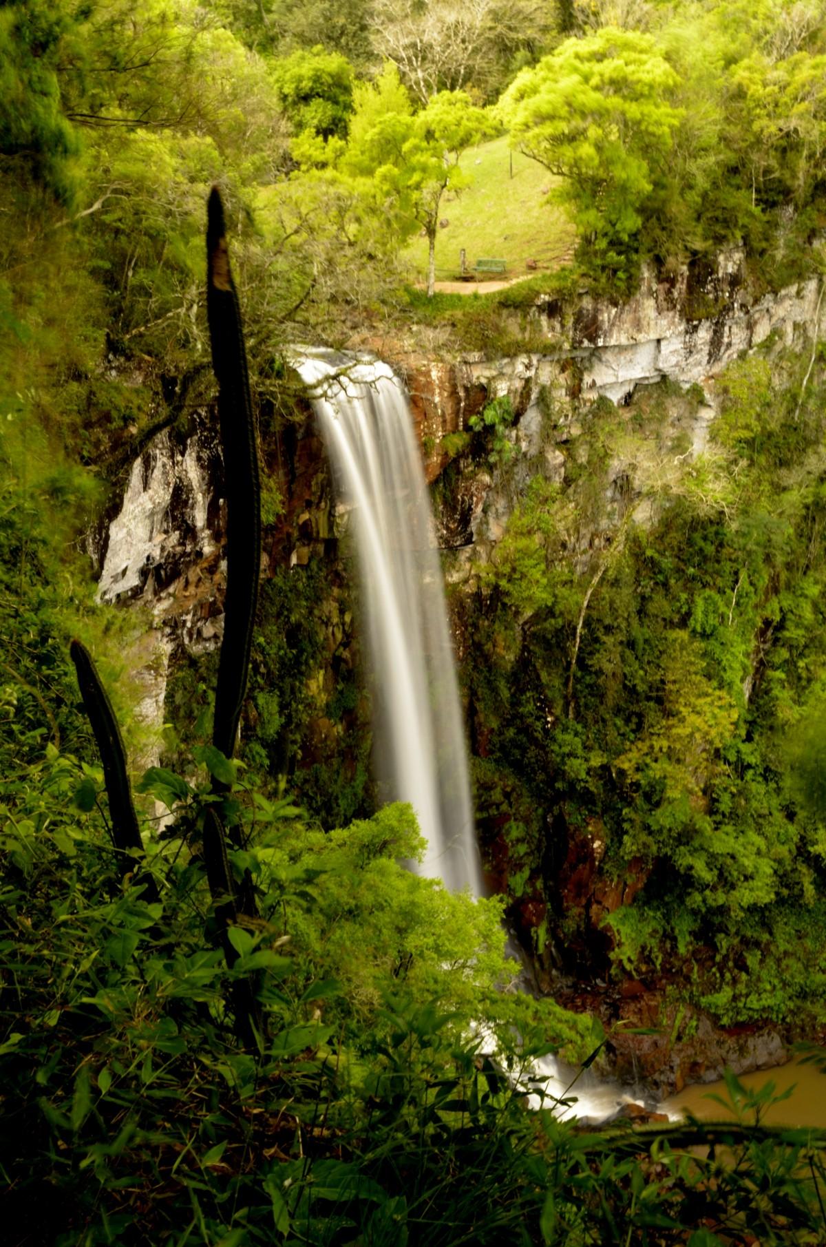 Fotos gratis paisaje rbol naturaleza bosque rock for Cascada par