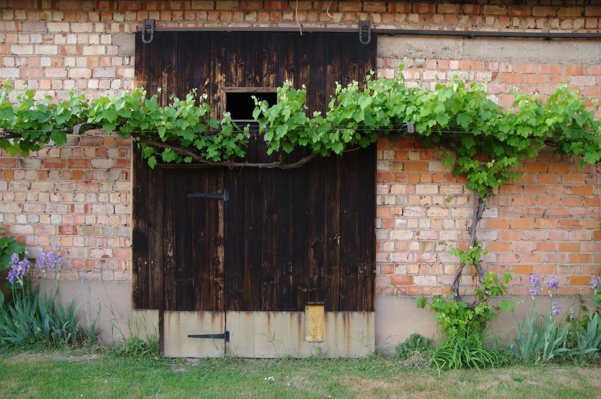 Images gratuites cascade fleur fen tre maison mur for Fenetre zone de qualification