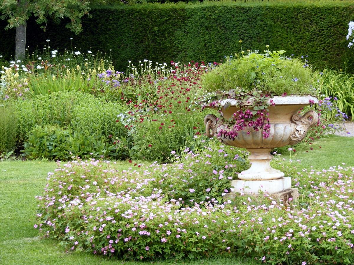 images gratuites arbre la nature herbe pelouse fleur buisson vert parc flore les. Black Bedroom Furniture Sets. Home Design Ideas