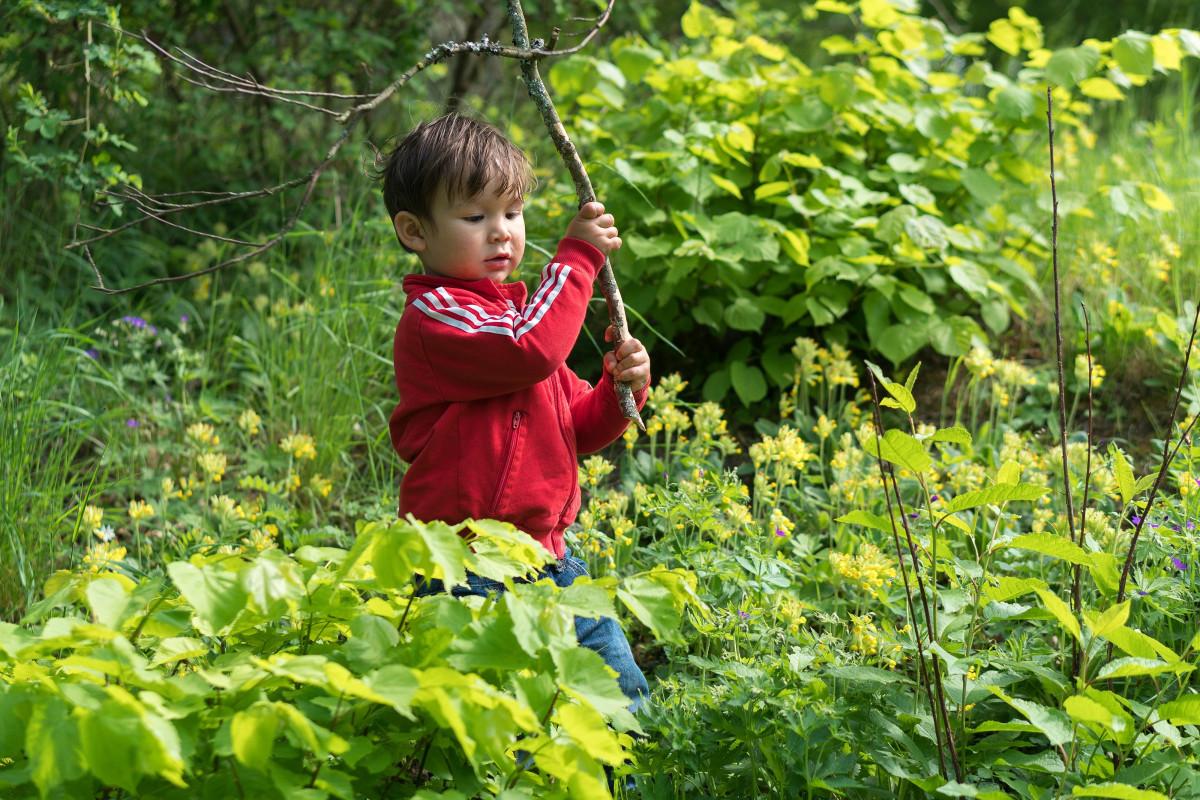 Рисунки с природой и детьми фото