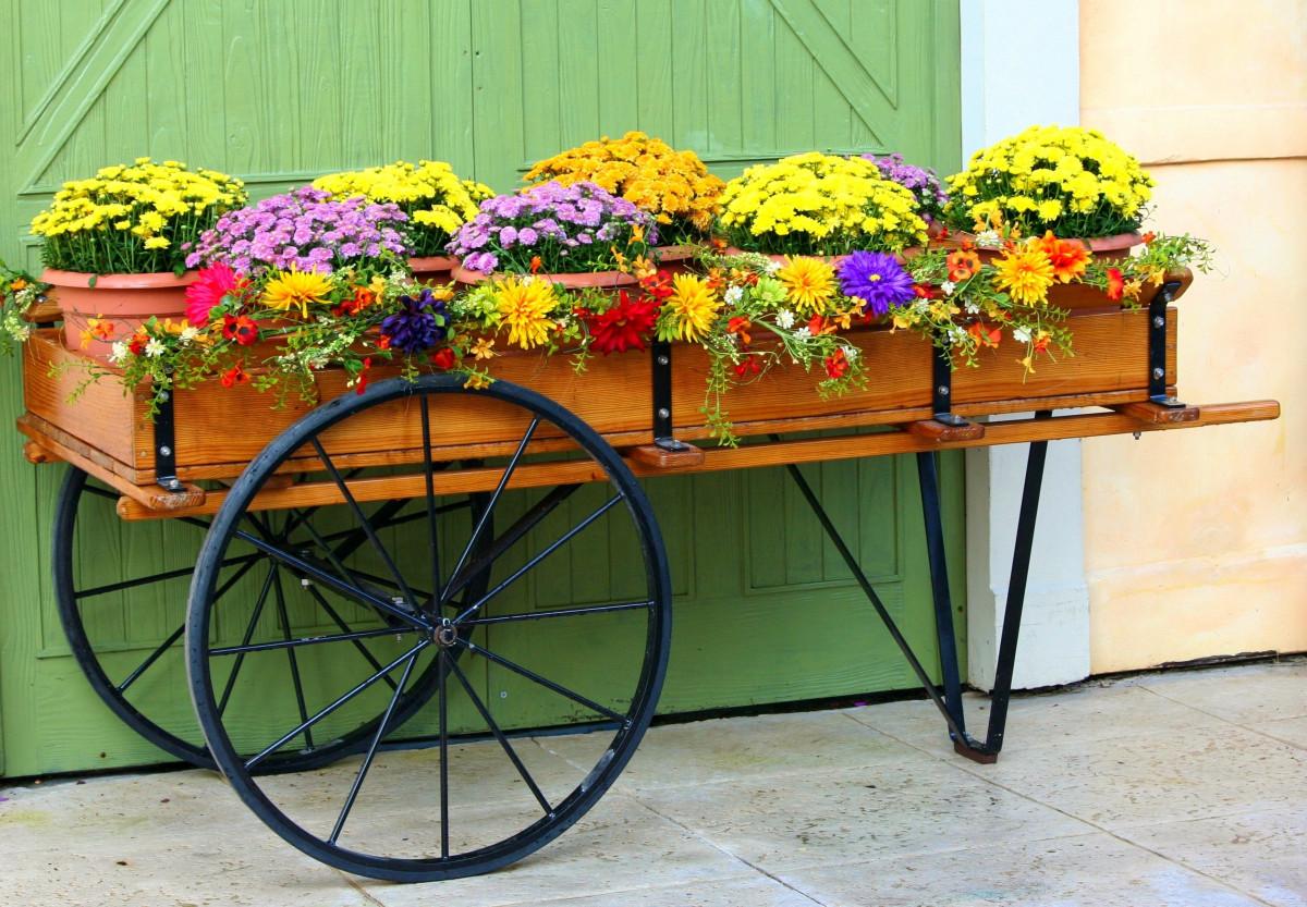 Фото кашпо под цветы