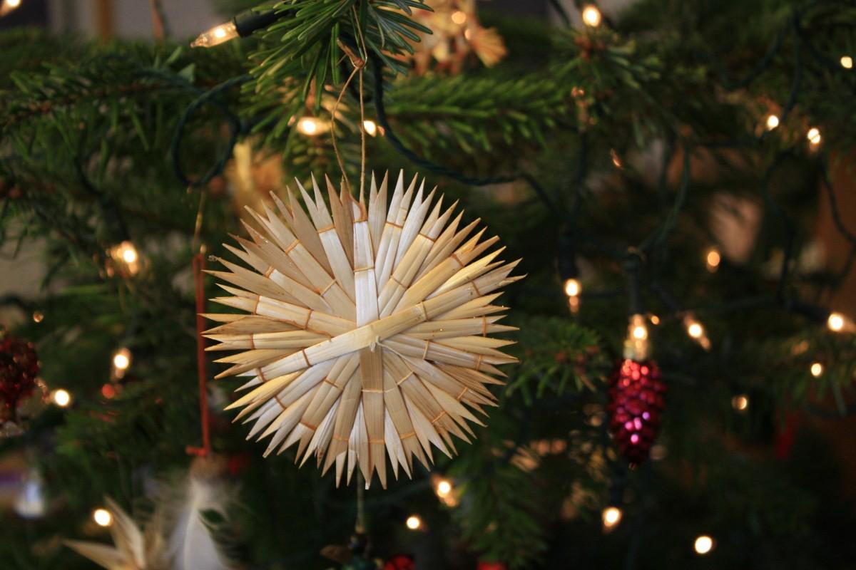 Images gratuites branche fleur vacances sapin arbre de no l d coration de no l un - Decoration branche arbre ...