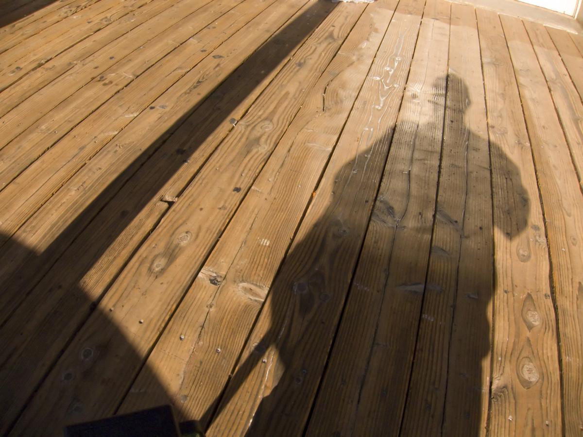 Free images landscape nature deck boardwalk floor for Roof and floor