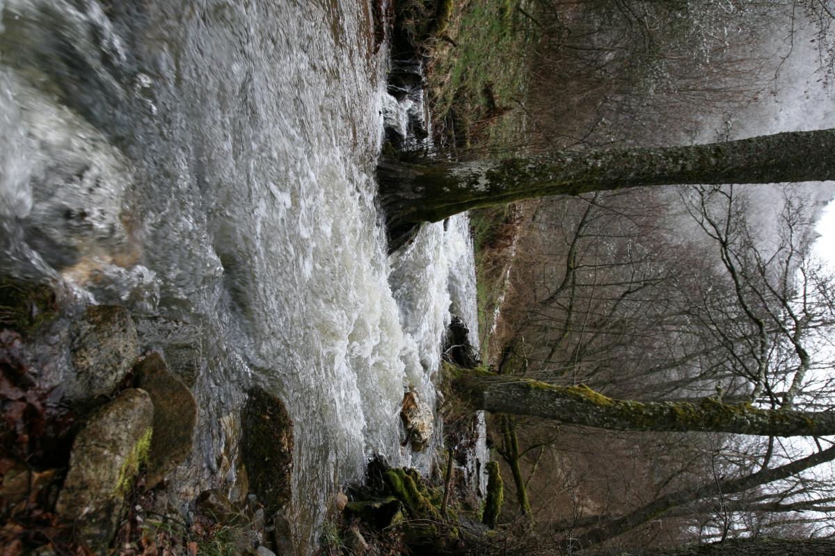 images gratuites arbre eau la nature cascade ruisseau r gion sauvage feuille rivi re. Black Bedroom Furniture Sets. Home Design Ideas