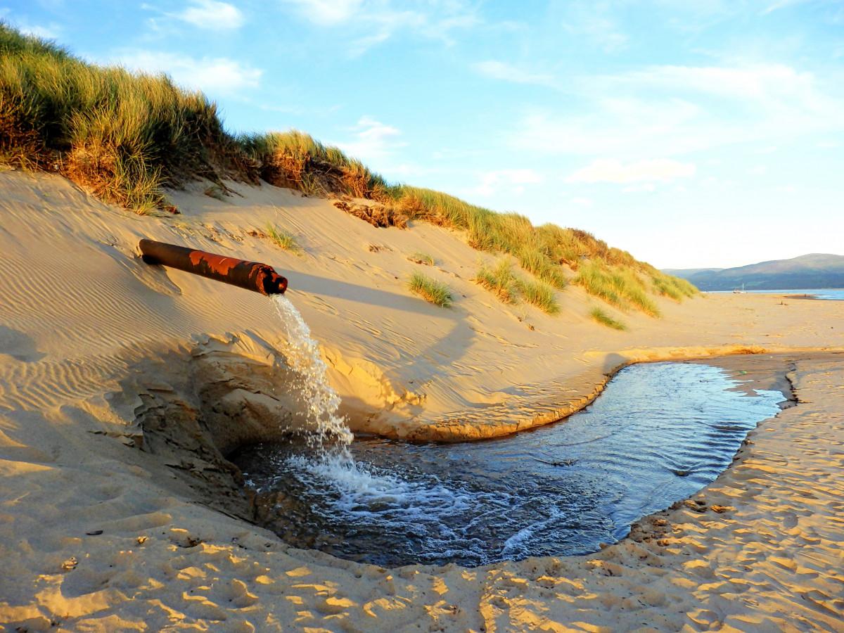 реки с песчаными берегами фото красивых рек чапыгина карьере