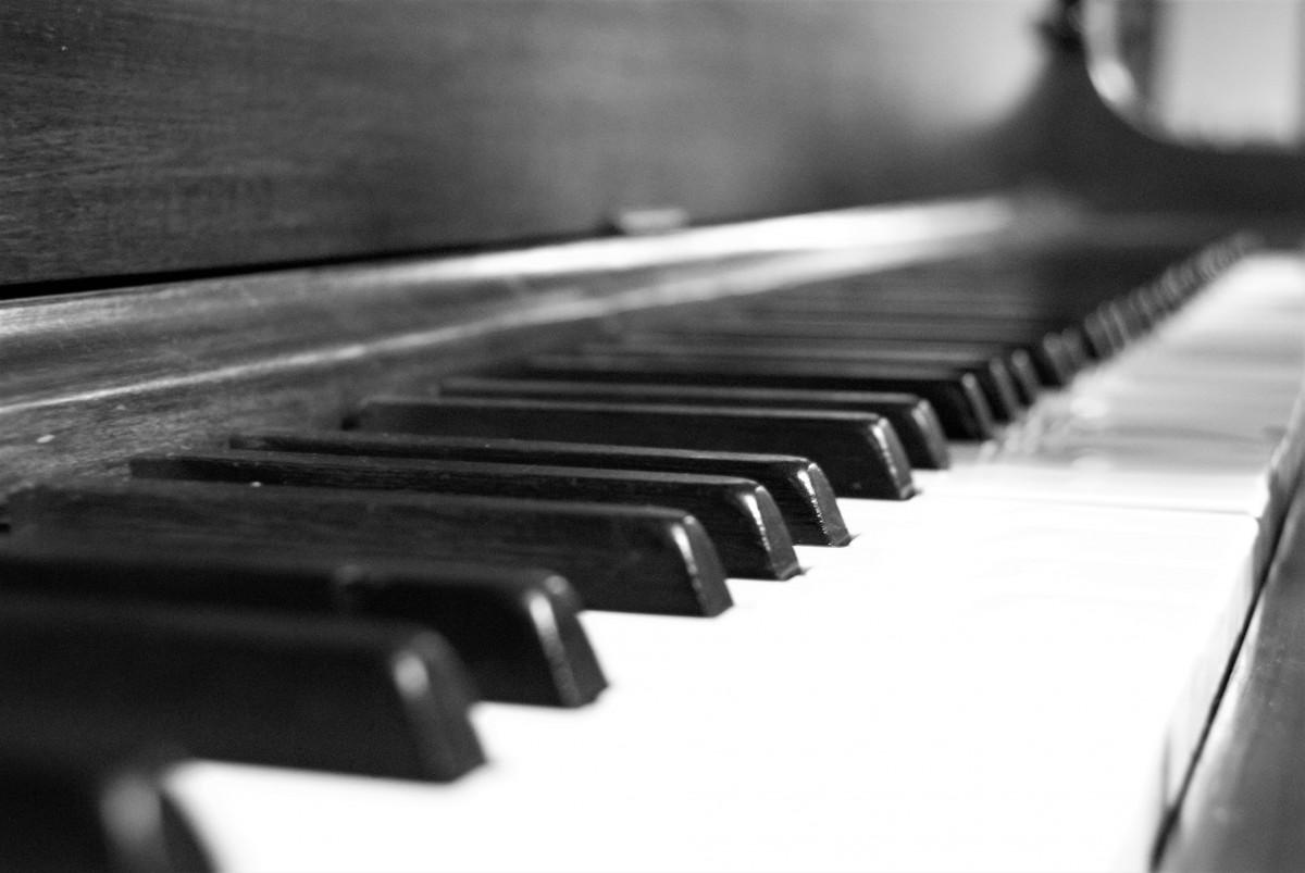 fotos gratis mano en blanco y negro teclado tecnolog a piano m sico monocromo. Black Bedroom Furniture Sets. Home Design Ideas