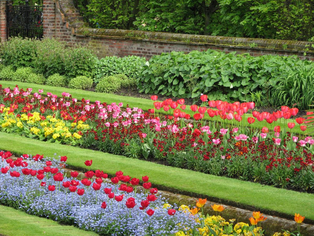 images gratuites pelouse fleur tulipe arbuste parterre de fleurs jardin botanique plante. Black Bedroom Furniture Sets. Home Design Ideas