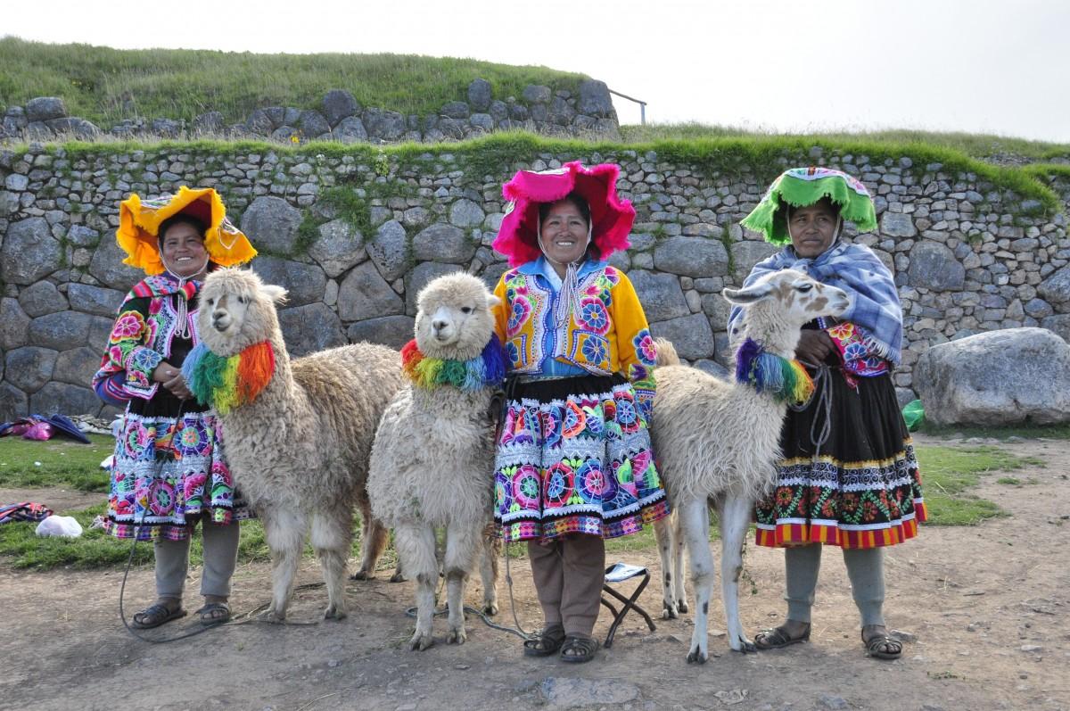 arquitectura granja mamífero agricultura turismo Perú alpaca inca lama Sudamerica Camello como mamífero Quechua andino