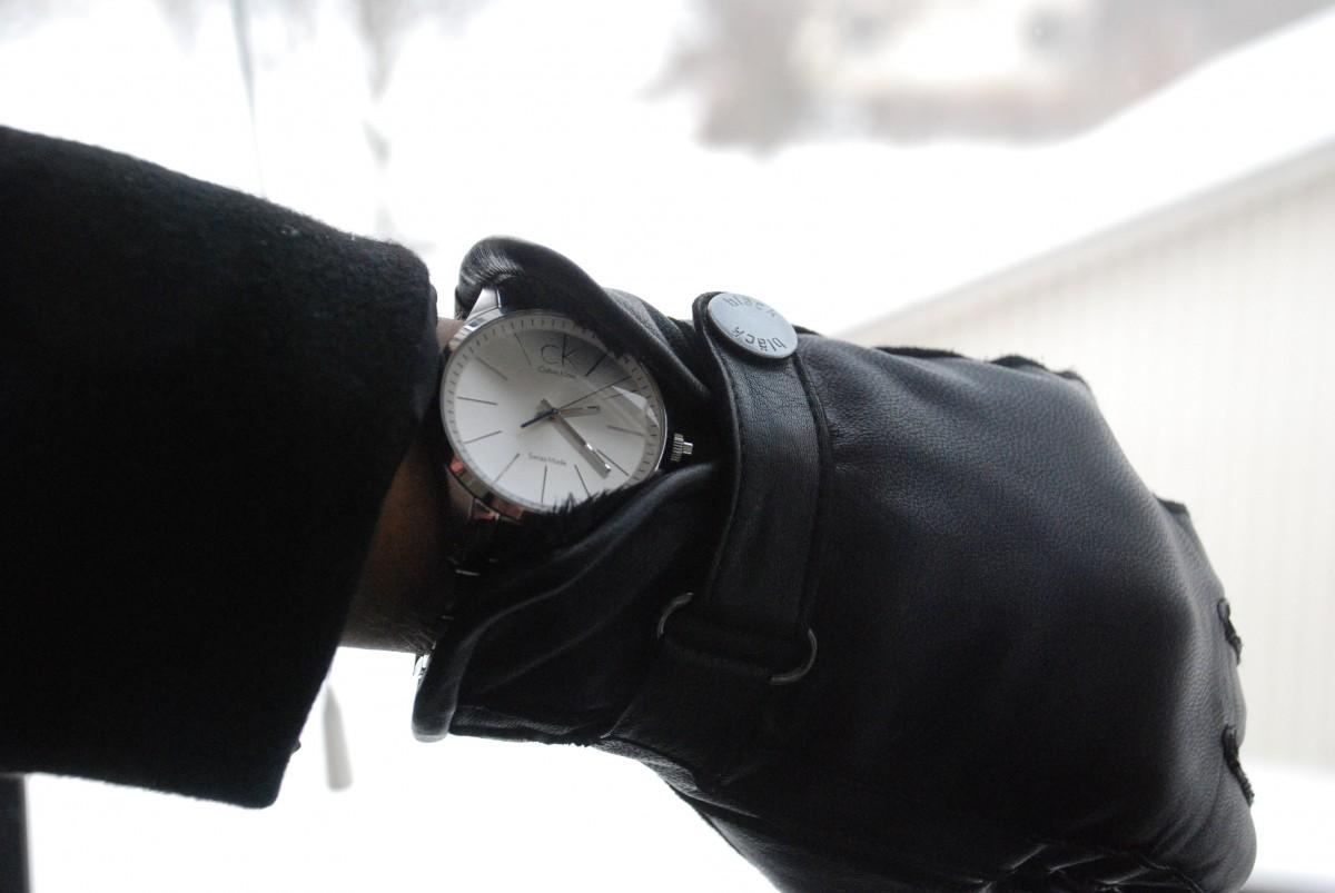 Free Images : watch, hand, leather, sunglass, bag, handbag ...