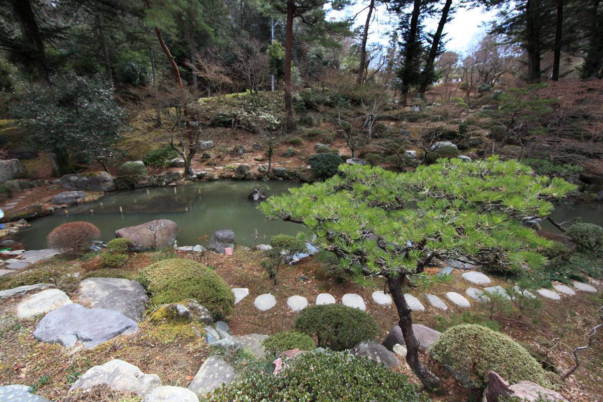 Fotos gratis desierto flor valle estanque alto for Estanque japones