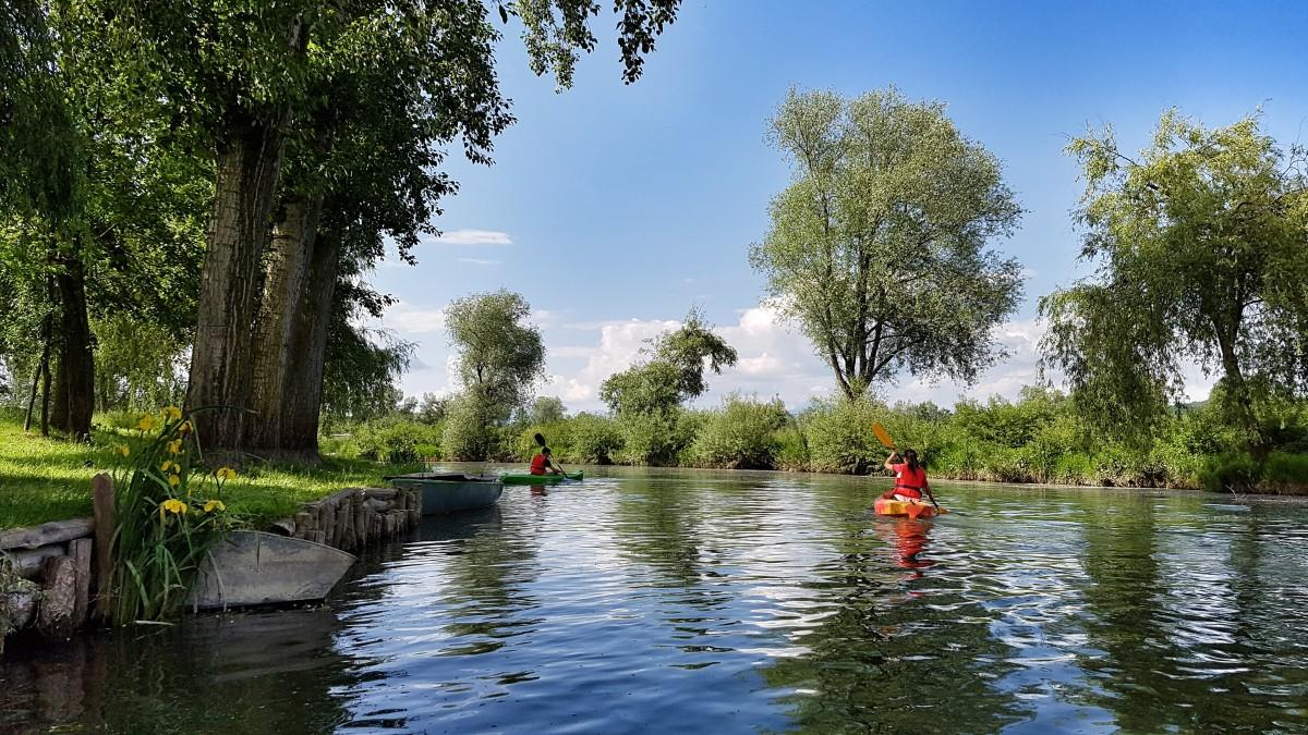 Fotos gratis paisaje agua naturaleza barco lago for Estanque reflectante