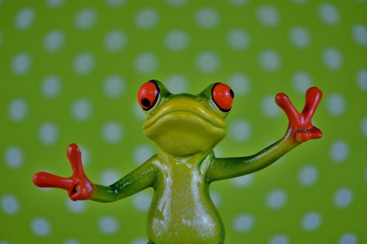 Днем рождения, смешные картинки про лягушек