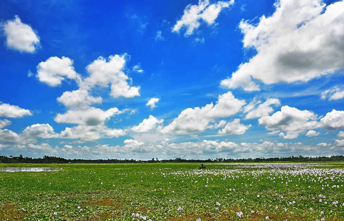 картинки голубое небо природа водоемов уха-фесте секретах