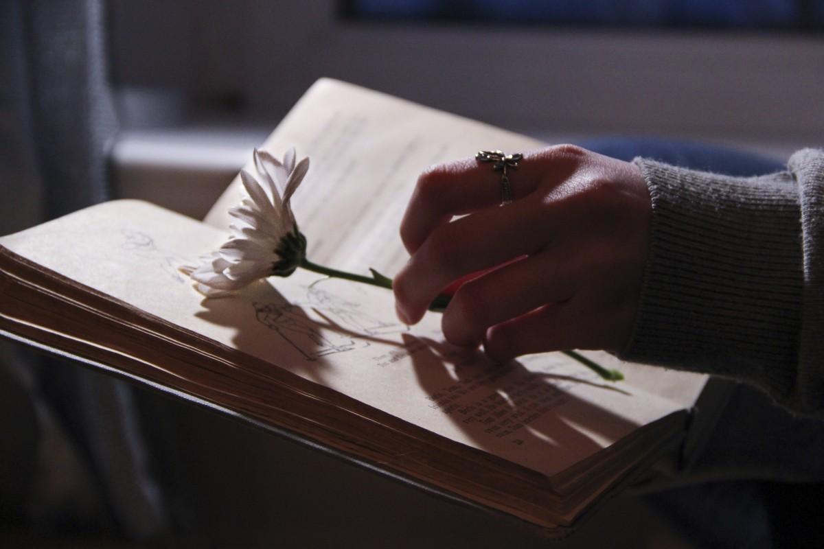 L'encre & la plume | Ecriture  Book_darkness_evening_night_light_nature_beautiful_history-567538