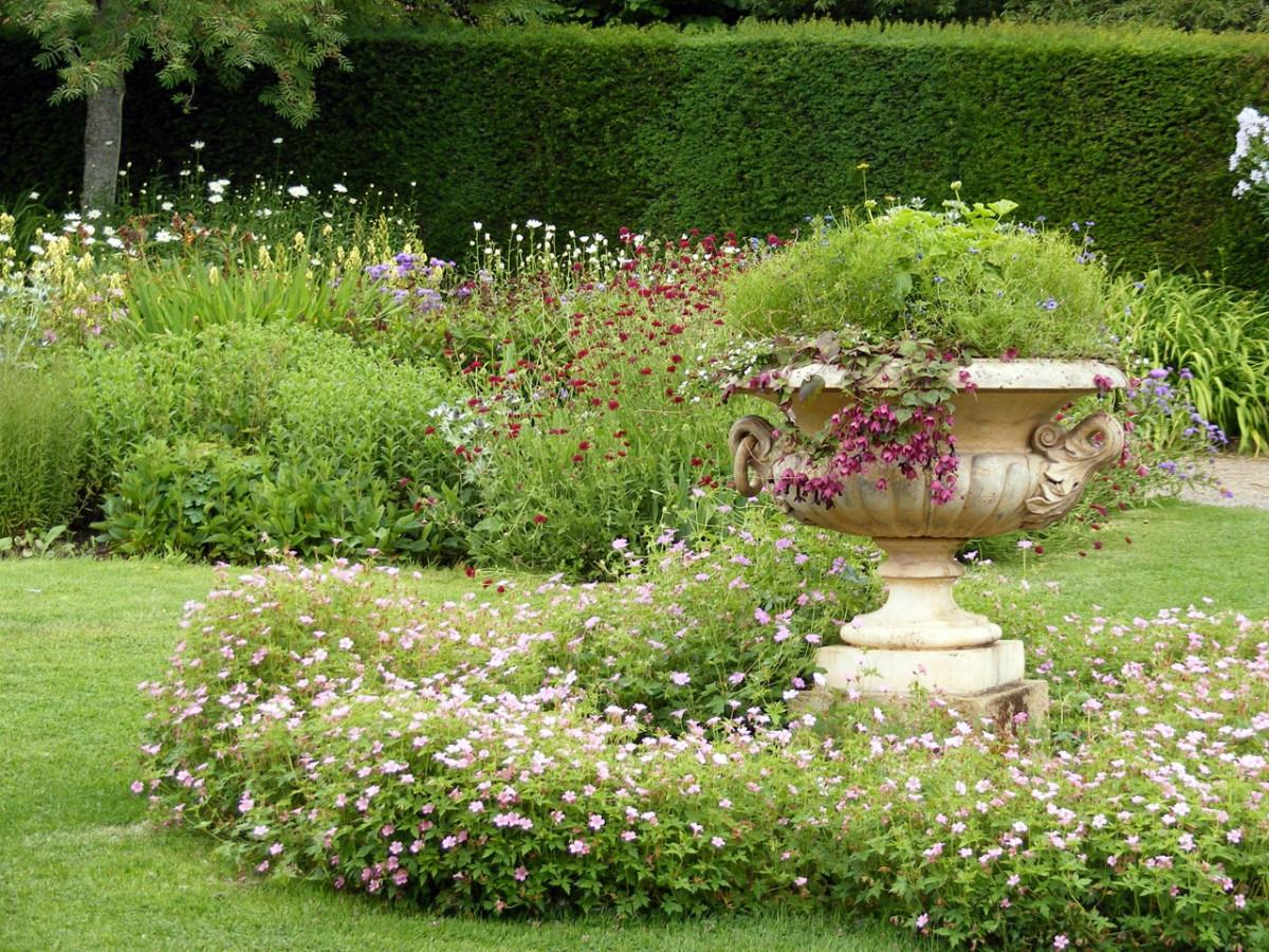 Fotos gratis prado flor parque bot nica flores cama - Disenador de jardines ...