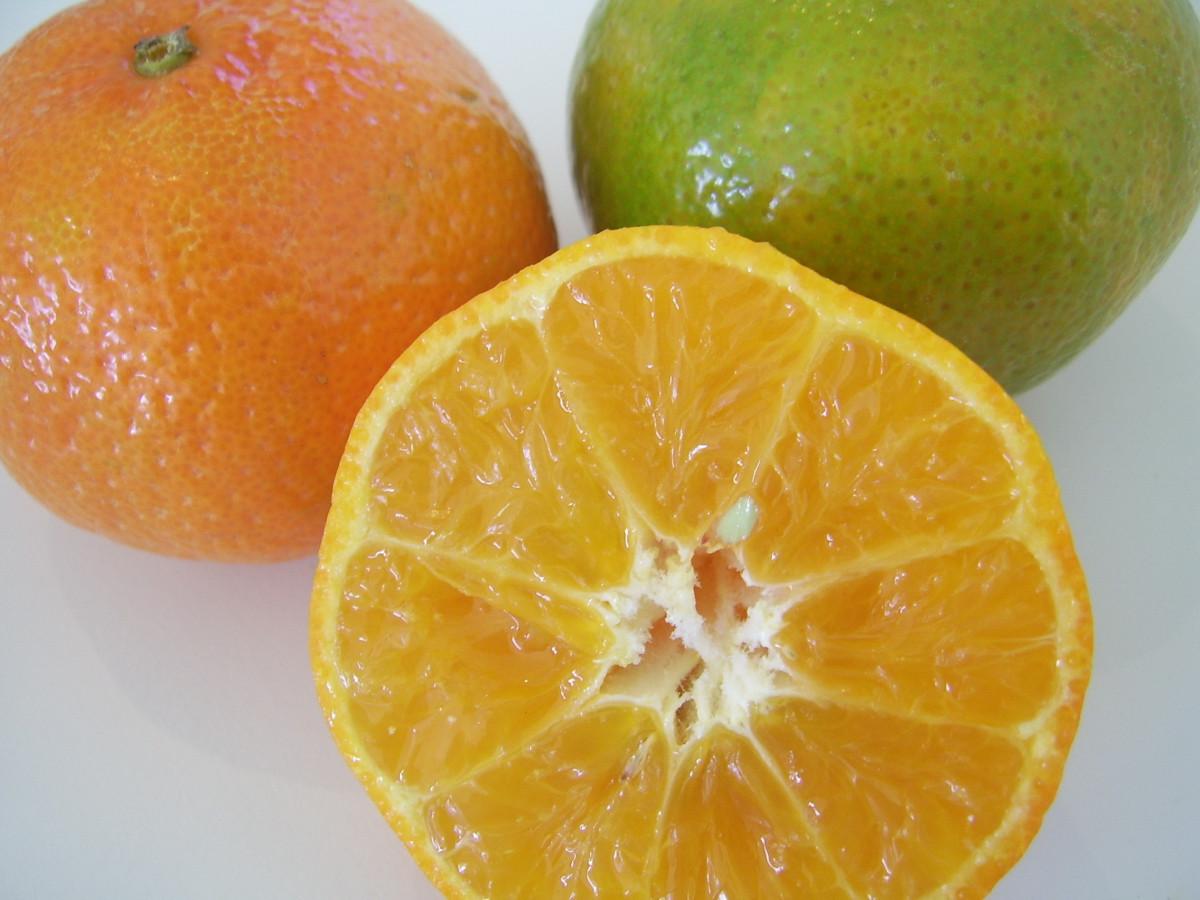 Images gratuites fruit aliments produire mandarine for Plante orange