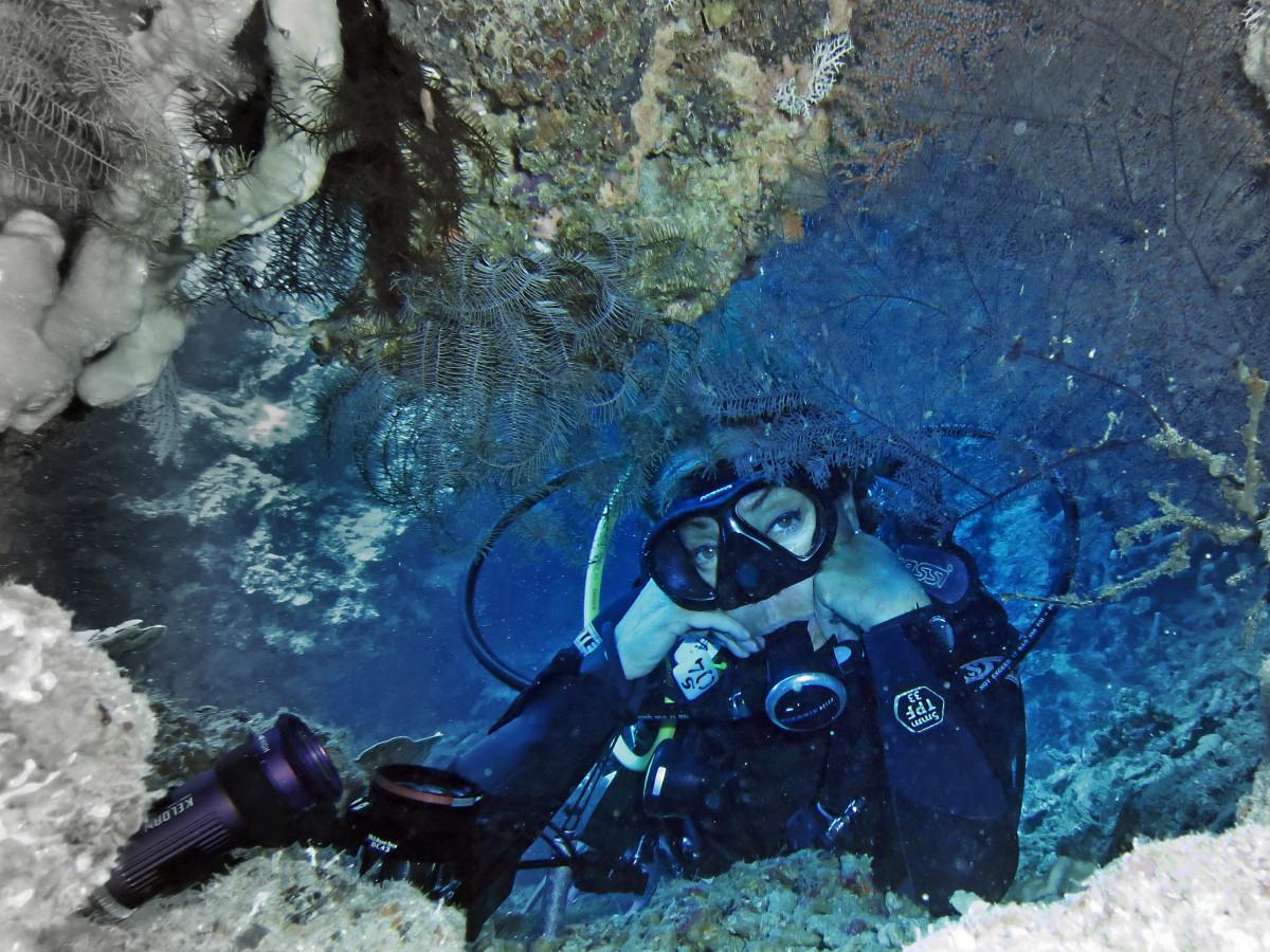 my favorite adventure sport scuba diving