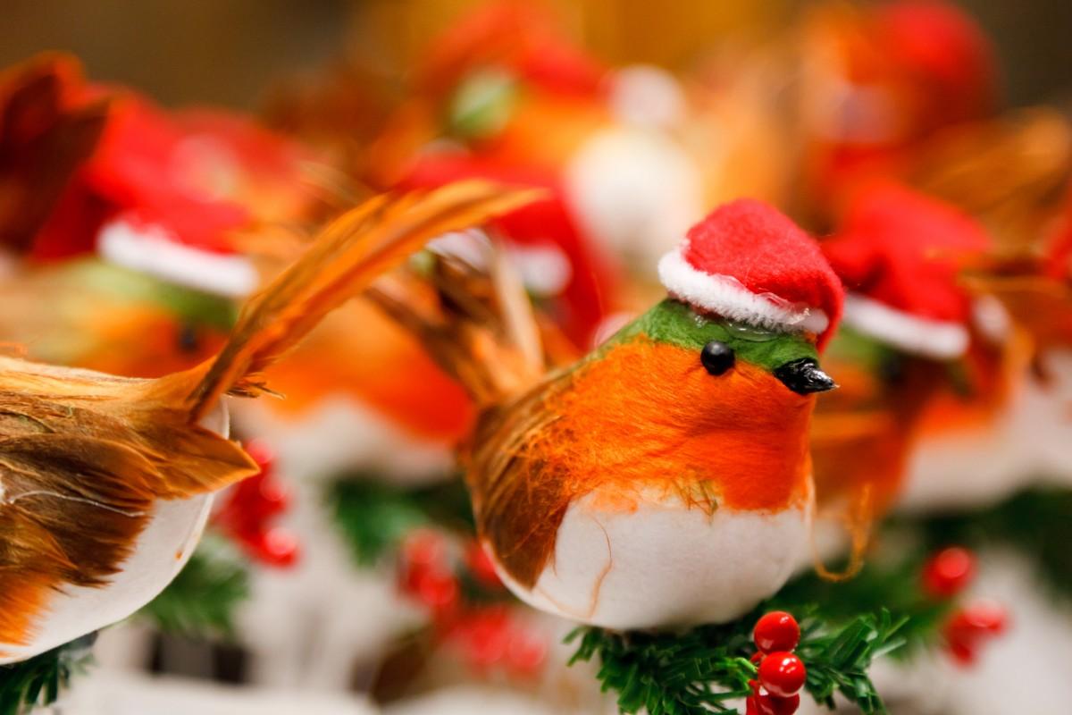 Gratis afbeeldingen bloem viering vacht eten rood vakantie hoed kerstmis nagerecht - Decoratie schotel ...