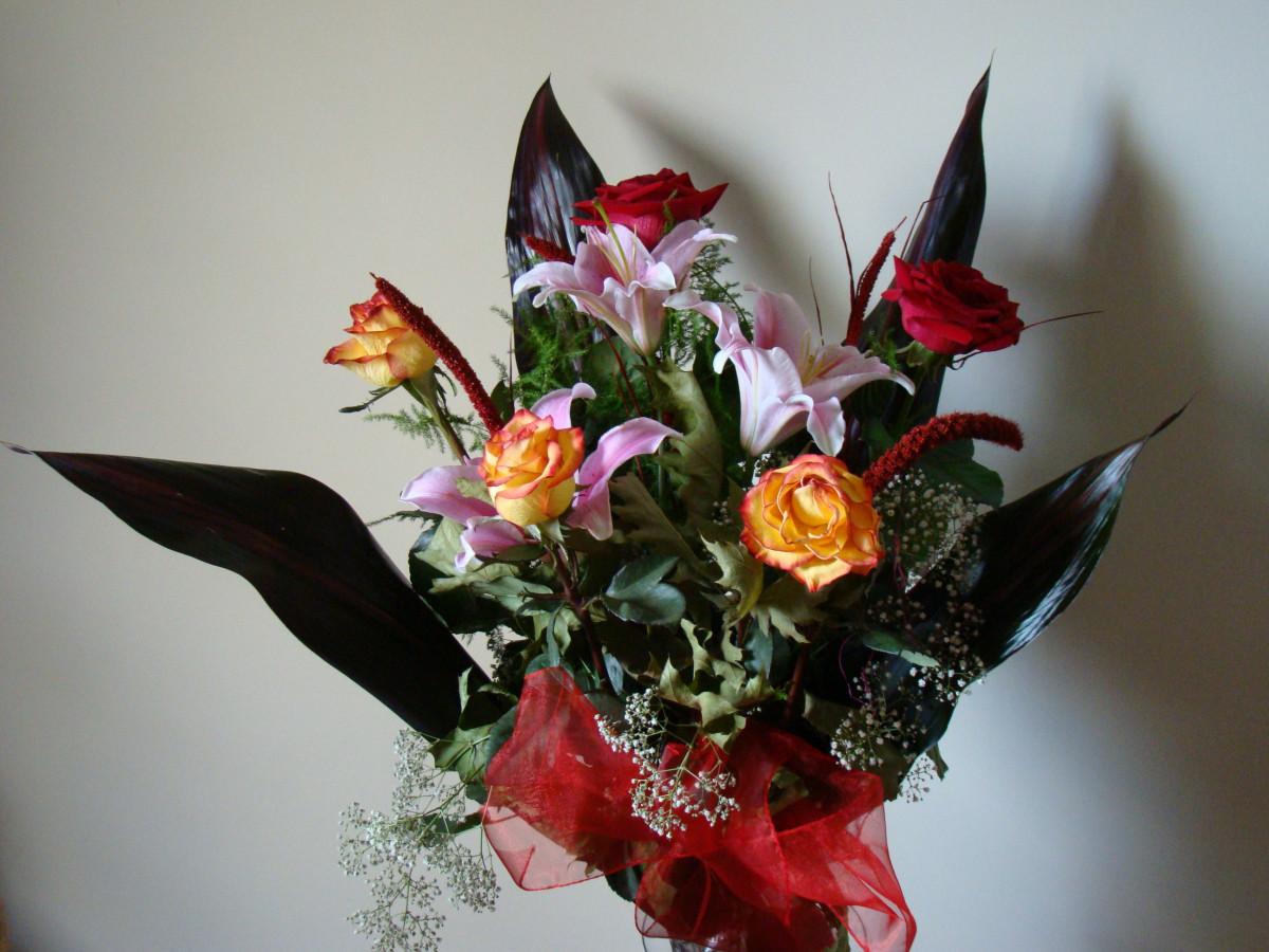 images gratuites plante d coration orange flore coquille des roses pot de fleur. Black Bedroom Furniture Sets. Home Design Ideas
