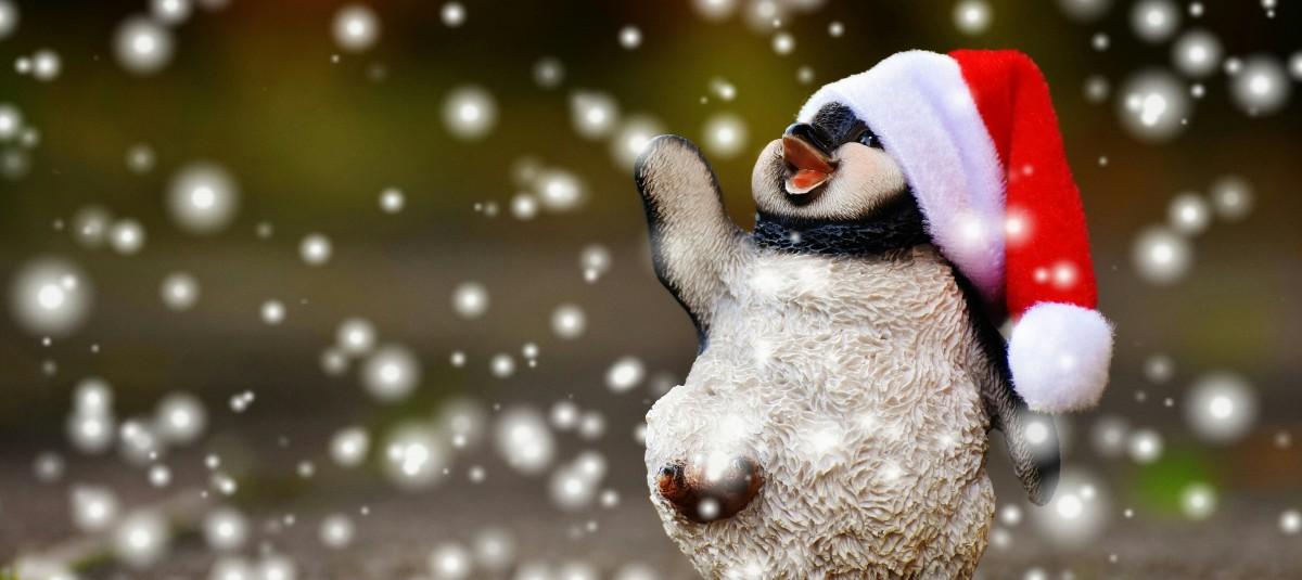 tree, branch, snow, winter, animal, cute, decoration, ceramic, weather, christmas, penguin, christmas decoration, santa hat, fun, figure, snowman, funny, figures, freezing, ceramic figures