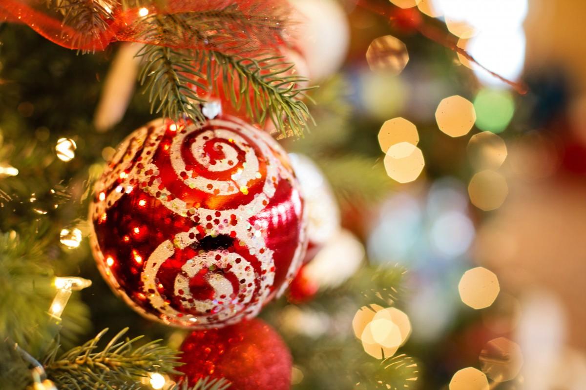 29c597aa6c strom vetva výzdoba dovolenka Vianoce vianočný stromček vianočné dekorácie  udalosť Vianoce