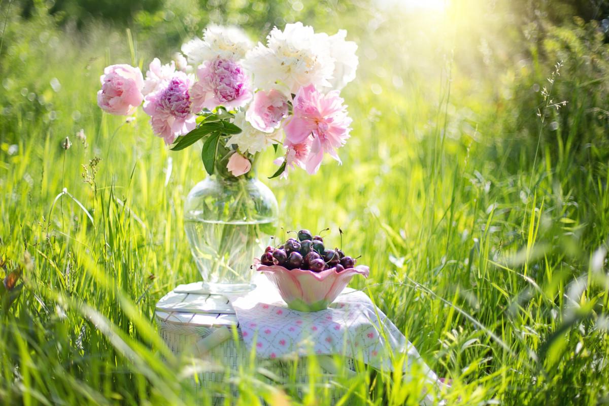 Доброе утро лето картинки красивые необычные