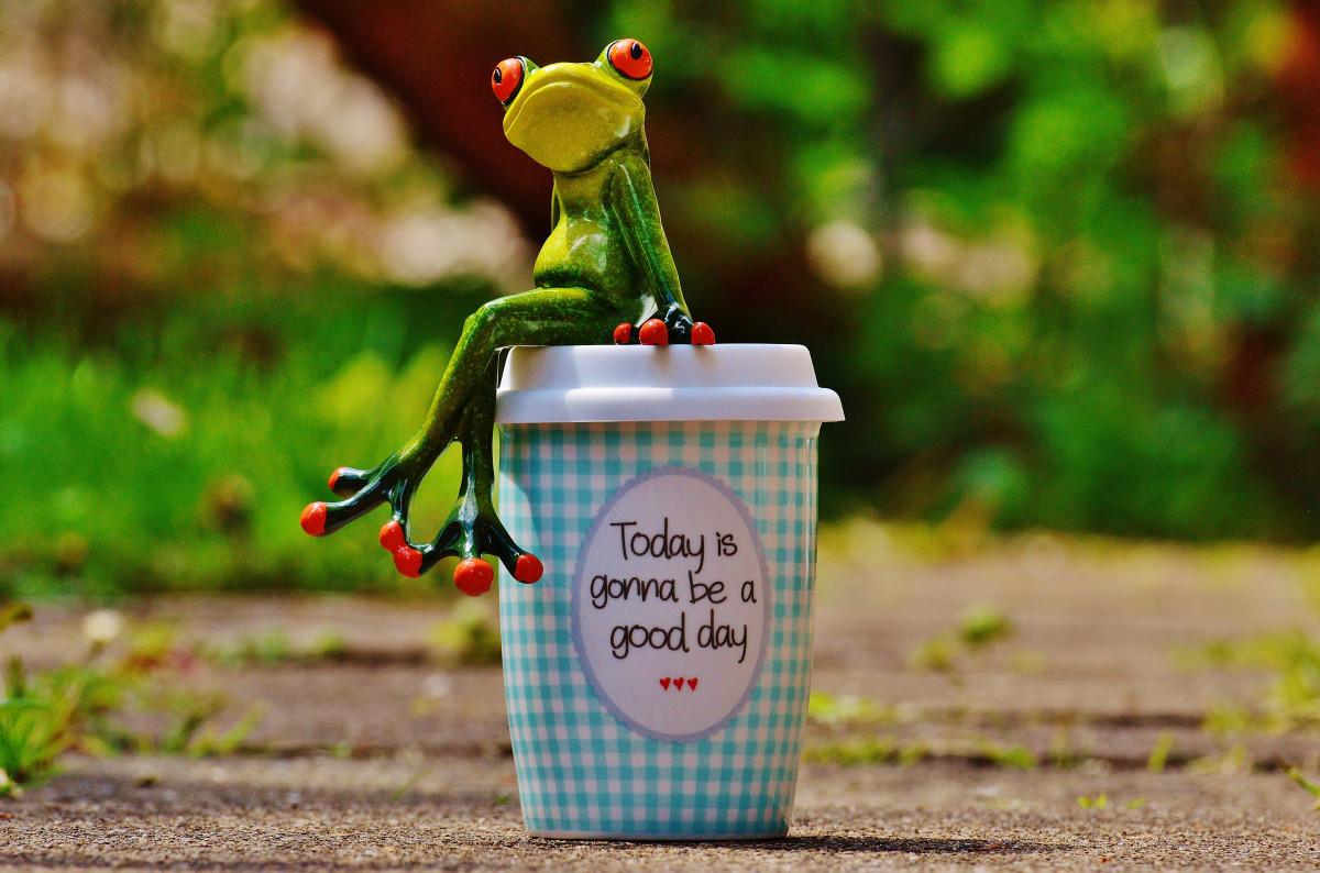 Дембеля картинки, добрые жизни радостные счастливые открытки с добрым утром