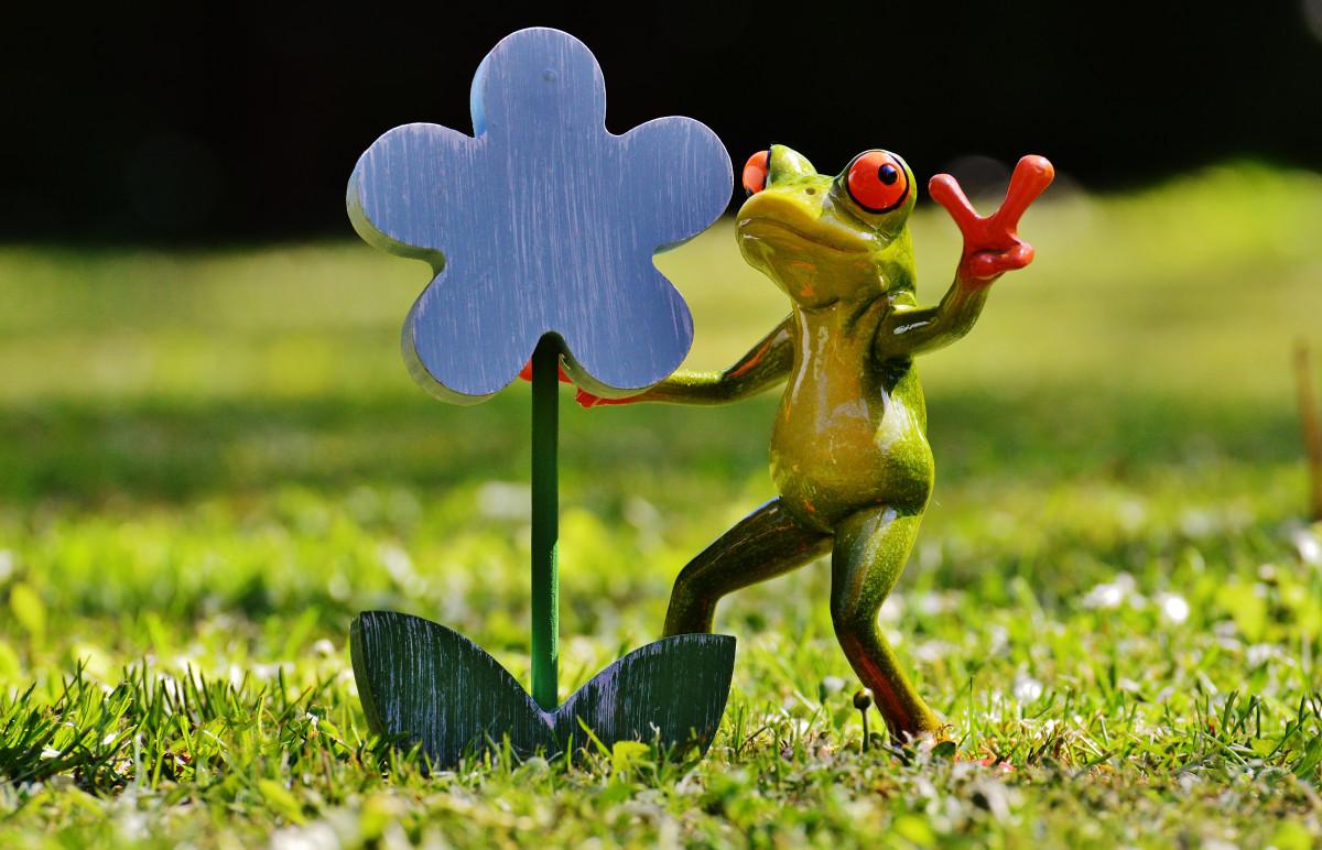 Прикольные картинки растения, поздравление