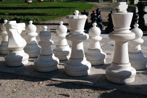 Free fotobanka : Černý a bílý, hrát si, rekreace, dáma ...
