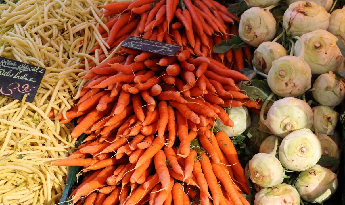 Выращивание моркови как бизнес: организация и план - бизнес идеи 10