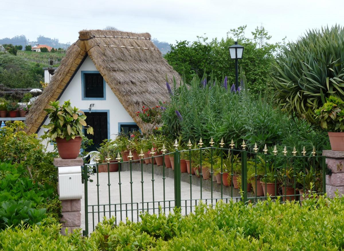 Gratis afbeeldingen : licht gazon villa huis bloem huis zomer