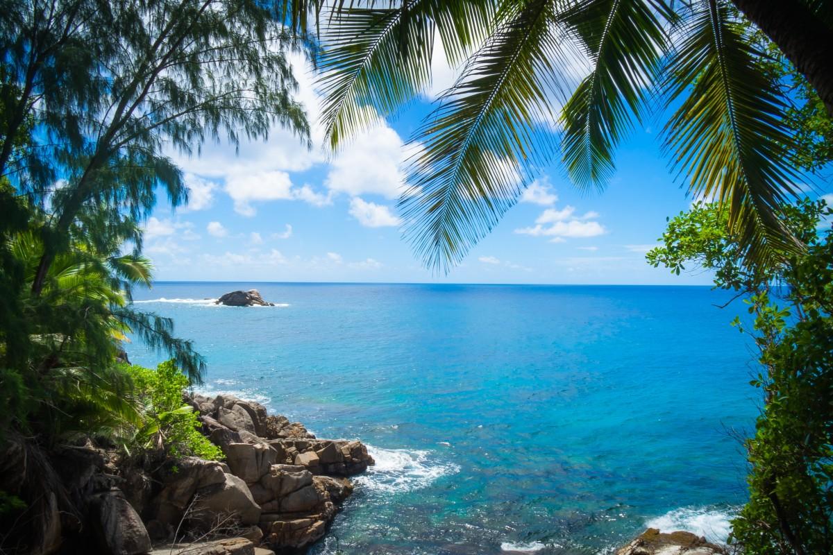 Free Images : Sea, Coast, Tree, Ocean, Summer, Vacation