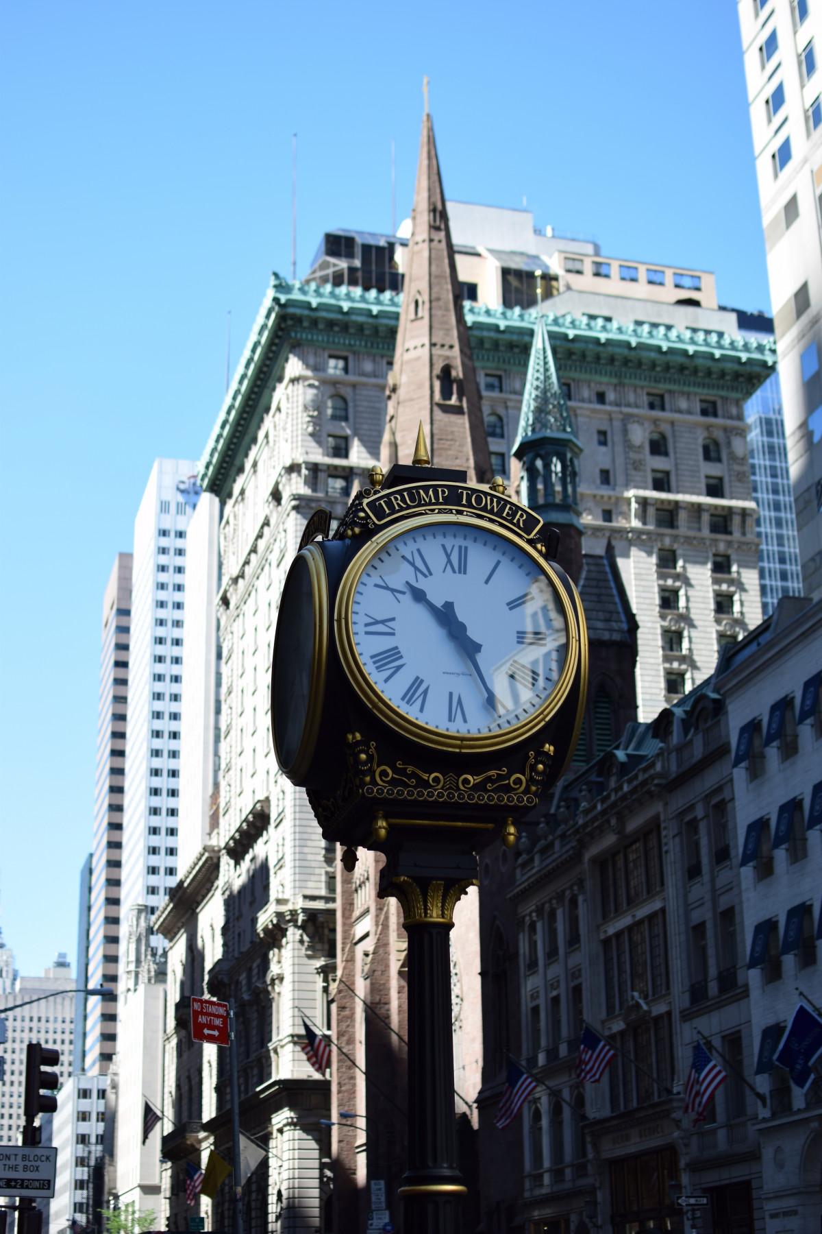 себя картинки городские часы породу часто сравнивают