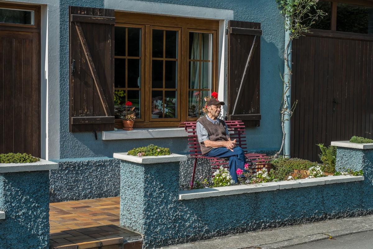 arbuste pour balcon