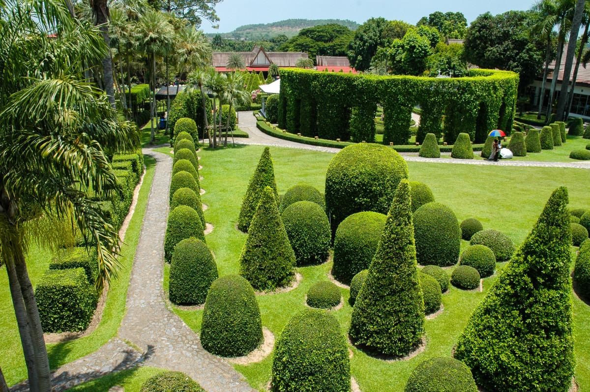 images gratuites paysage arbre herbe pelouse feuille vert feuilles persistantes parc. Black Bedroom Furniture Sets. Home Design Ideas