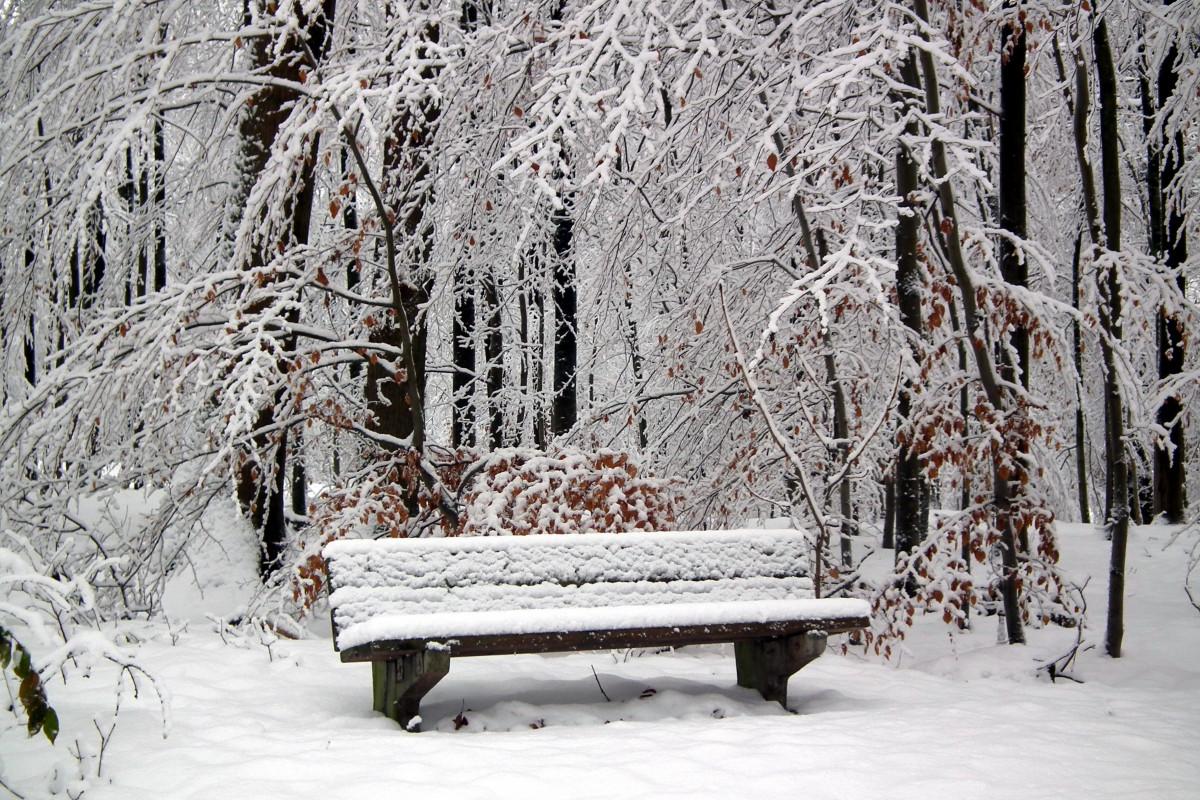 скамейка под снегом картинки старые