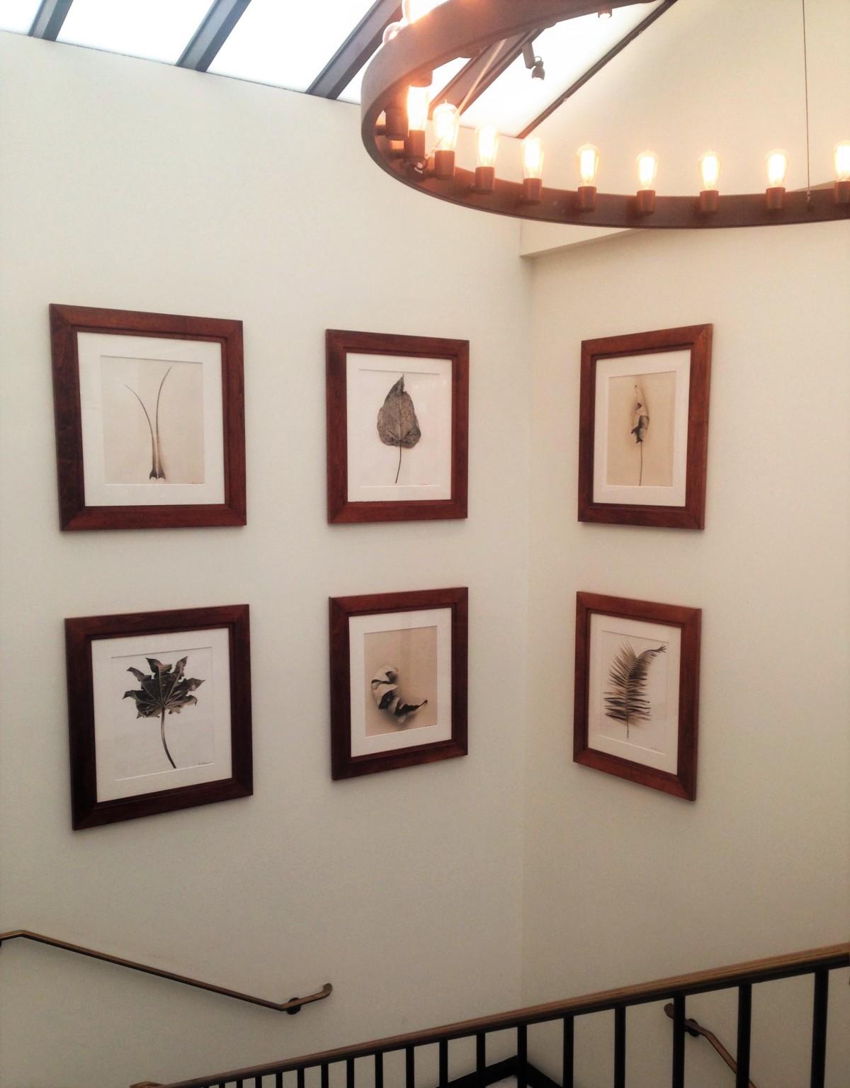 무료 이미지 : 사진 작가, 창문, 벽, 선반, 가구, 인테리어 디자인 ...