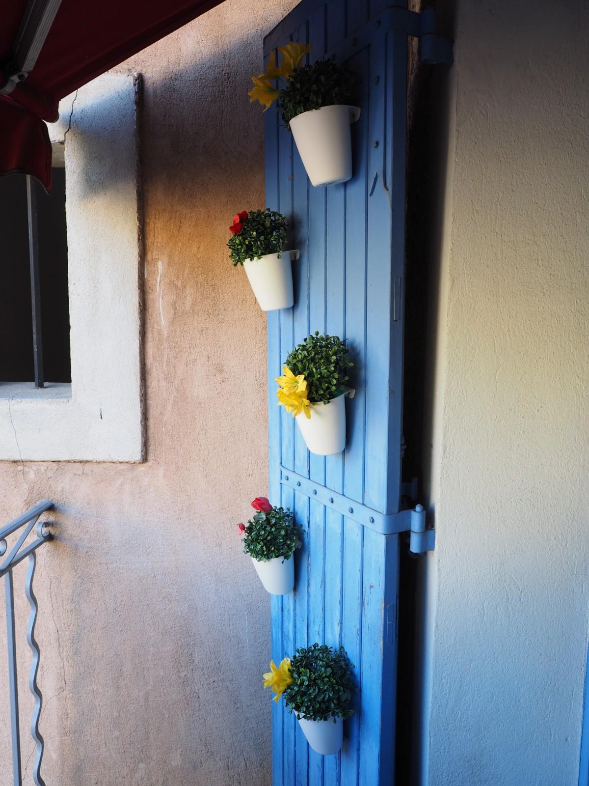 Fotos gratis libro planta blanco casa flor pared - Libros de decoracion de interiores gratis ...