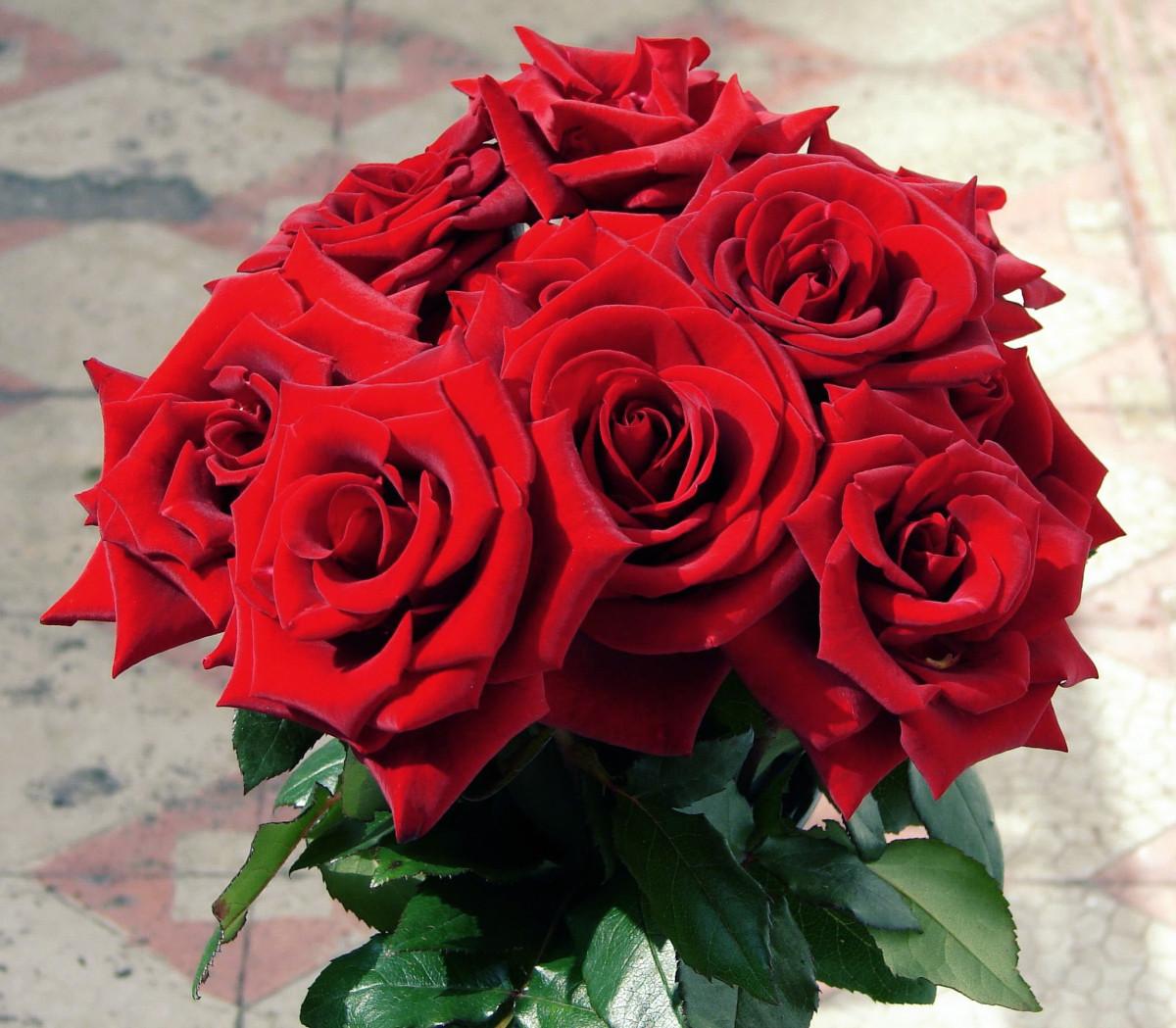 Красивые цветы для любимой, гифки